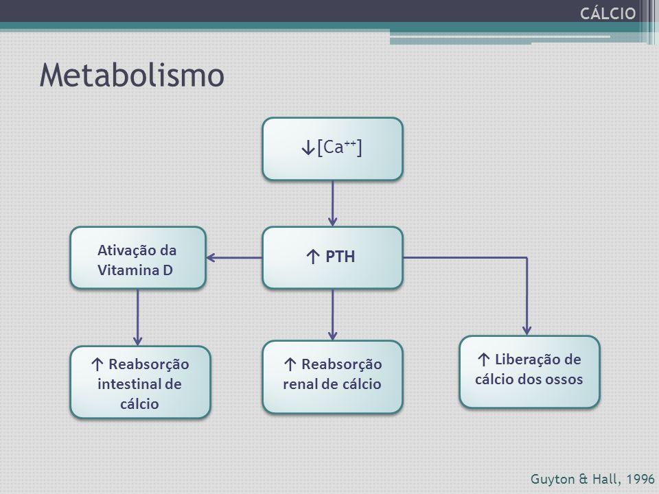 Metabolismo ↓[Ca++] ↑ PTH CÁLCIO Ativação da Vitamina D